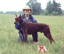 Linda Werlein with Arrk von Asgard at the UDC North American Working Dog Championship in Bowling Green, KY, 1994.