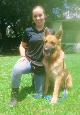 Jamie Cline, one of Euro Pros' Certified Trainers shown here with Bear a German Shepherd Service Jamie is training.